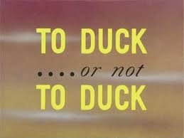 File:Not to Duck pic1.jpg
