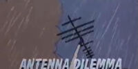 Antenna Dilemma