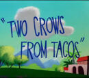 Two Crows from Tacos