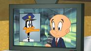 Working Duck (8)