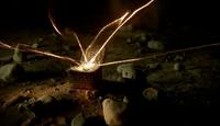 Una Mens powers transfer to sixth Origin Seed (410)