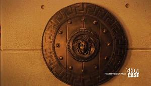 Aegis shield (508)