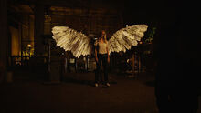 Tamsin Valkyrie wings (404)