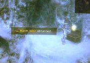 Warm-vest