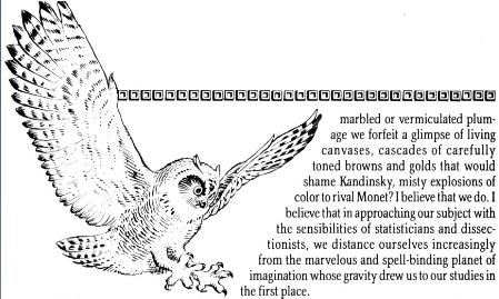 File:Watchmen bird.png