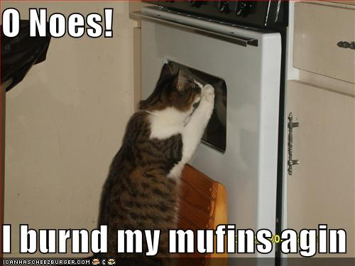 File:Burnedmuffins.jpg