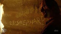 23-SHEPHARD