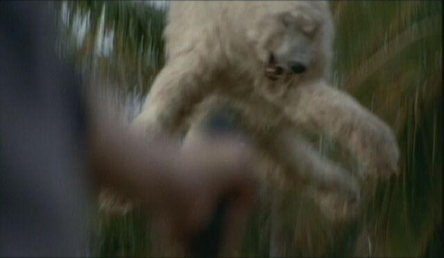 Archivo:BearLaunchFreeze.jpg