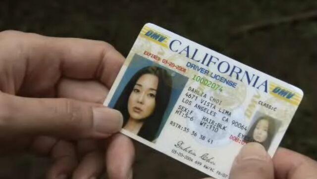 File:Sun driver license.jpg