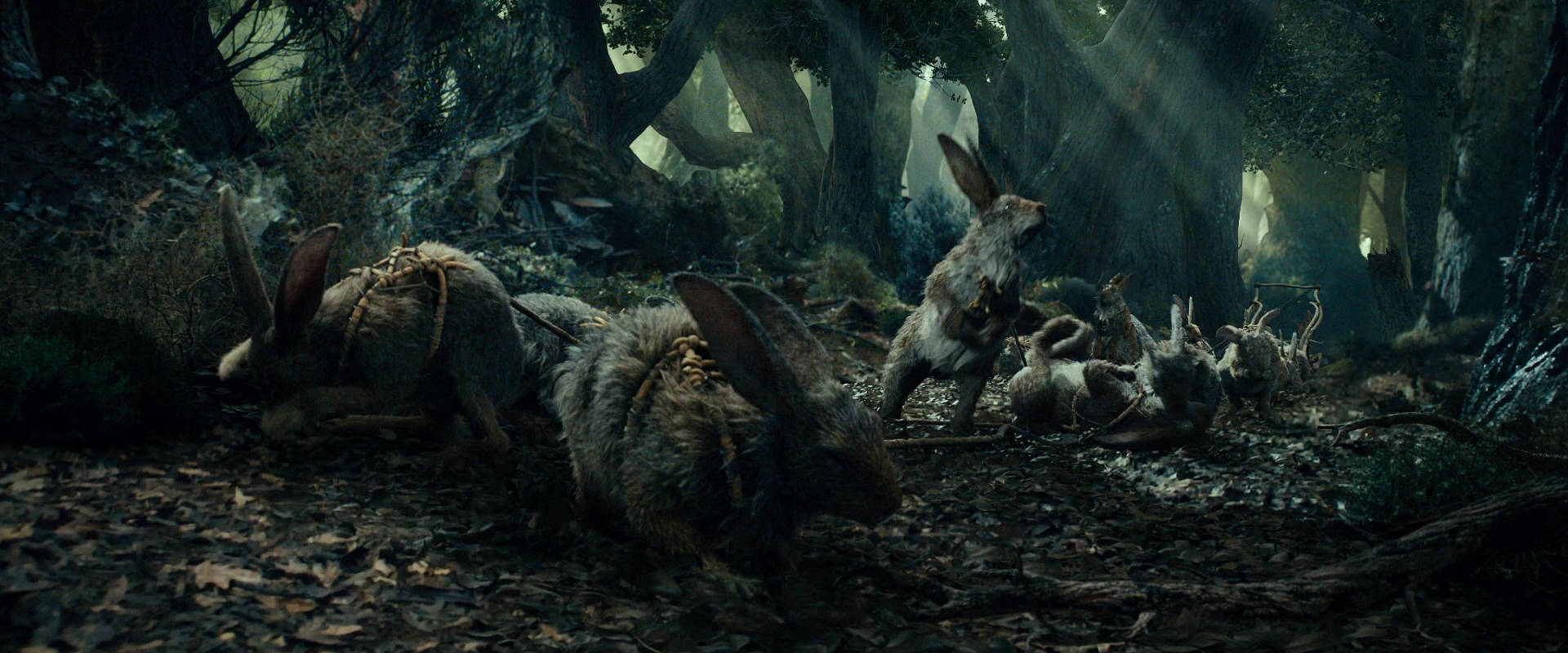 Image result for radagast hobbit rabbits