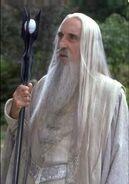Saruman; The White