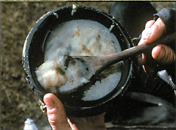 File:Rabbit Stew.png