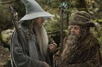 Radagast and Gandalf 2