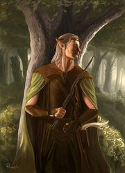Wood elf wizard
