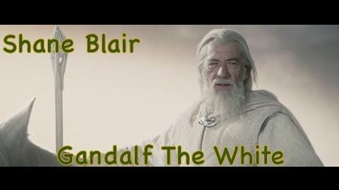 Gandalf The White (Lord Of The Rings Song)