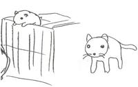 Tama the Cat Concept