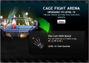 CageFightArenaLevel10