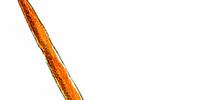 Weapons (Secret of Mana)
