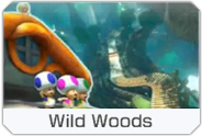 File:MK8-DLC-Course-icon-WildWoods.png