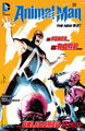 Animal Man Vol 2 25