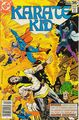 Karate Kid 13