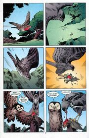 Cock Robin Dies