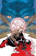 Detective Comics Vol 1 856 Textless