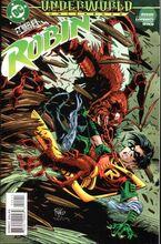 Robin v.4 24