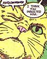 PG's cat 06