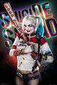 Harley Quinn DC Extended Universe