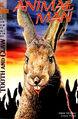 Animal Man vol 1 62 cover