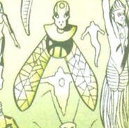 Unknown Lantern 01