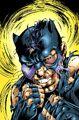 Wildcat 0003