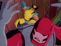 Wolverine This One For Morph