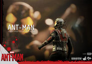 Ant-Man Hot Toys 16