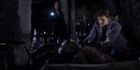 Jemma Simmons/Gallery