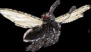 Flying Carpenter Ant FH