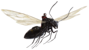Flying Carpenter Ant FH