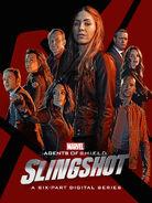 Slingshot Poster 4