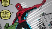 Spider-Man (Amazing Fantasy - 75 Years)