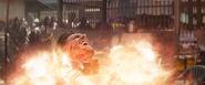 Crossbones-Fireball
