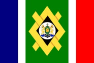 Flag of Johannesburg