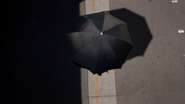 Cloaking Umbrella1