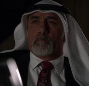 The Sheikh
