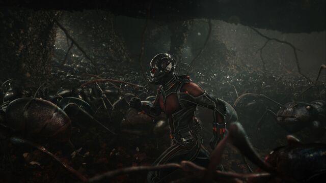 File:Ant-Man promo 5.jpg