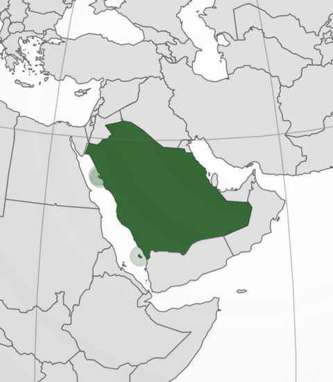 File:Map of Saudi Arabia.png