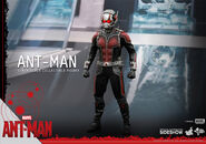 Ant-Man Hot Toys 8