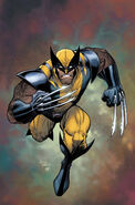 Wolverine Vol 2 302 Textless