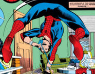 Peter Parker (Earth-616) from Amazing Spider-Man Vol 1 224 001