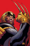 Wolverine Origins -08 - Cover 01 - Preview